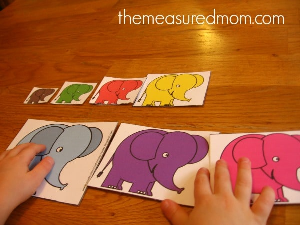 child ordering elephant cards