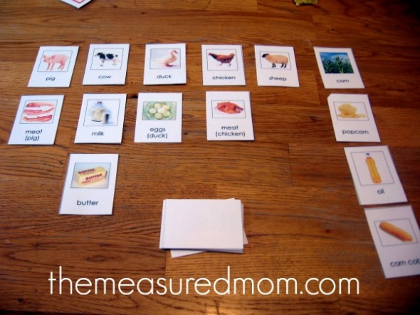 classified farm animals and byproducts cards
