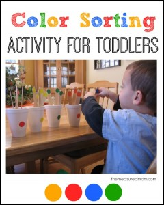 Simple Color Sorting Activity for Toddlers