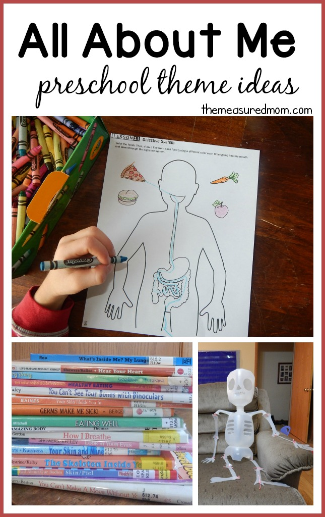 All about me fabulous science activities from Our Time