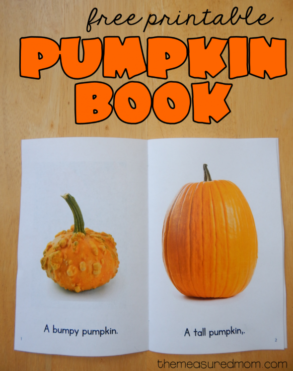 photograph relating to Pumpkin Printable identify Absolutely free printable pumpkin guide - The Calculated Mother