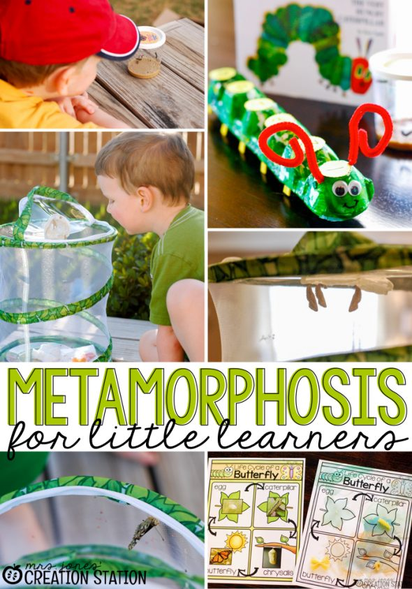 Pull out these fun spring science activities for preschool and kindergarten!