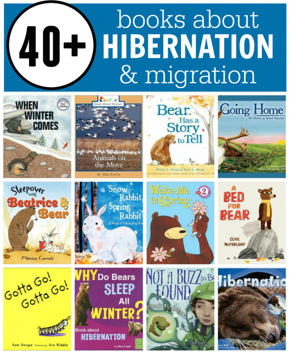 books about hibernation and migration