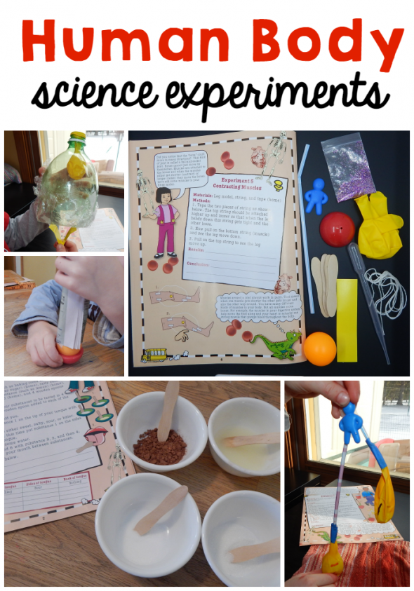 human body science experiments