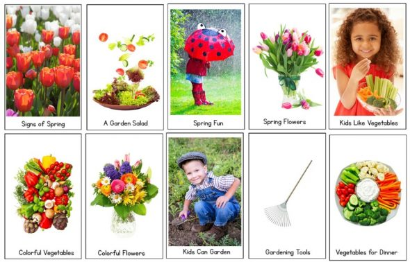 spring nf readers set
