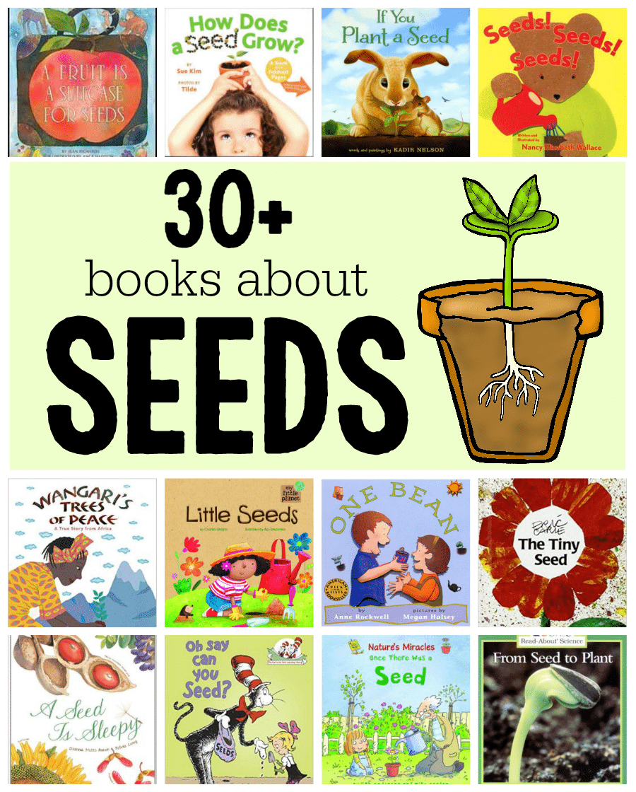Books about seeds and plants - The Measured Mom
