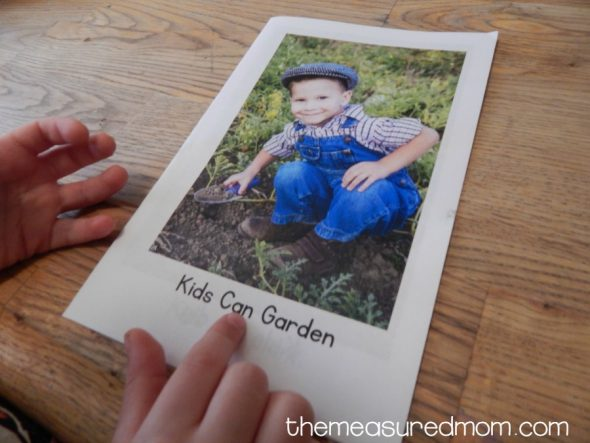 gardening book 2
