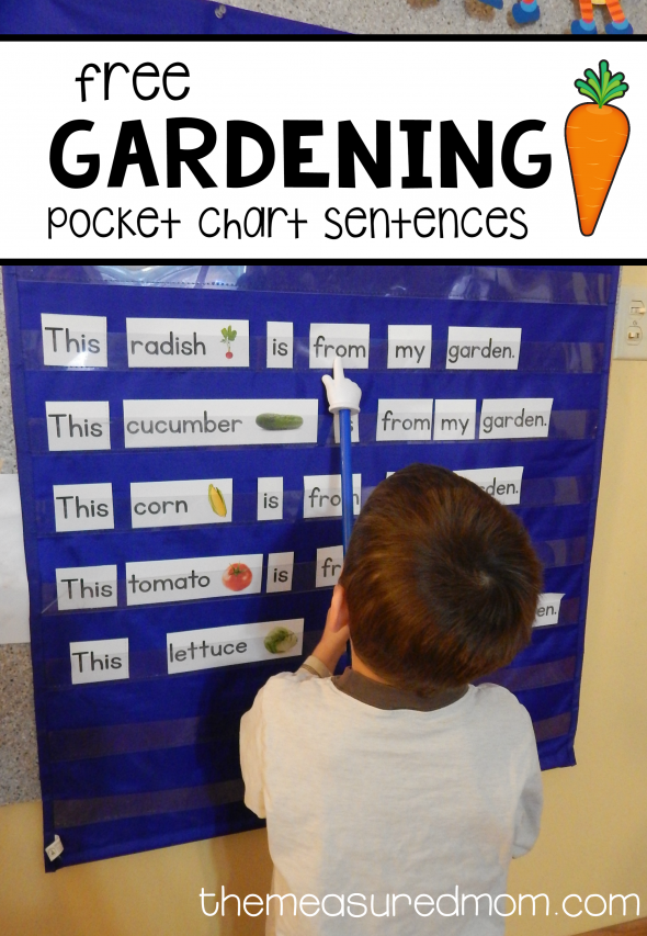 gardening pocket chart sentences