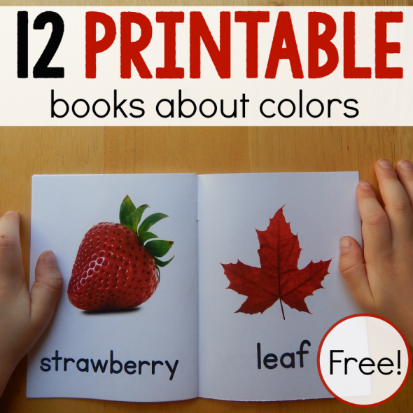 my 2 year old loves these books about colors for toddlers she carries - Color Books For Toddlers