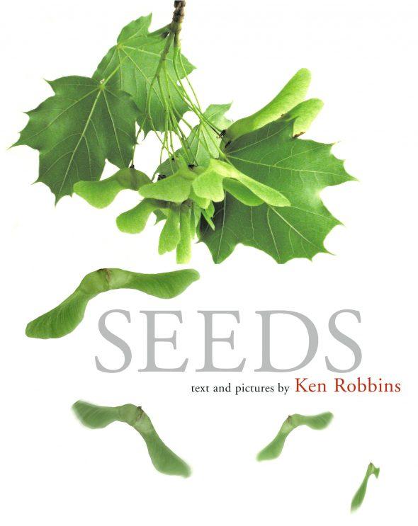 seed20