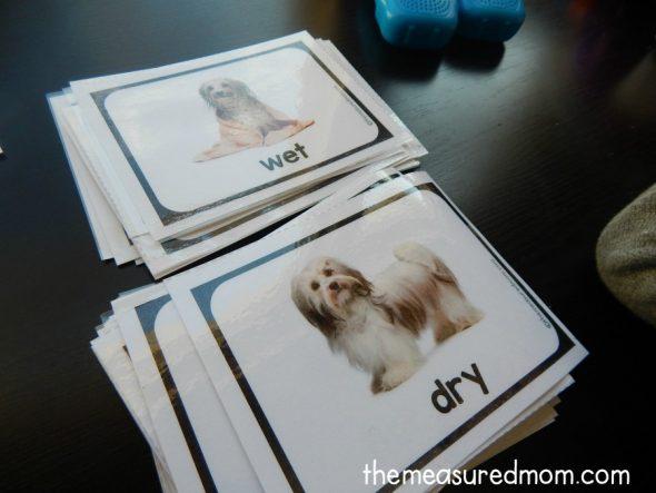 opposite-cards-1