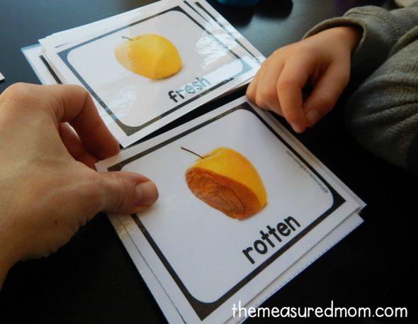 opposite-cards-2