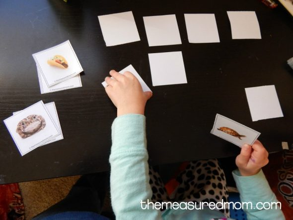 Enjoy these fun letter T activities for toddlers
