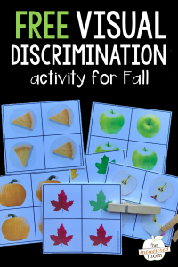 Free visual discrimination activity for Fall!