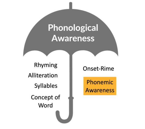 teaching phonemic awareness - graphic